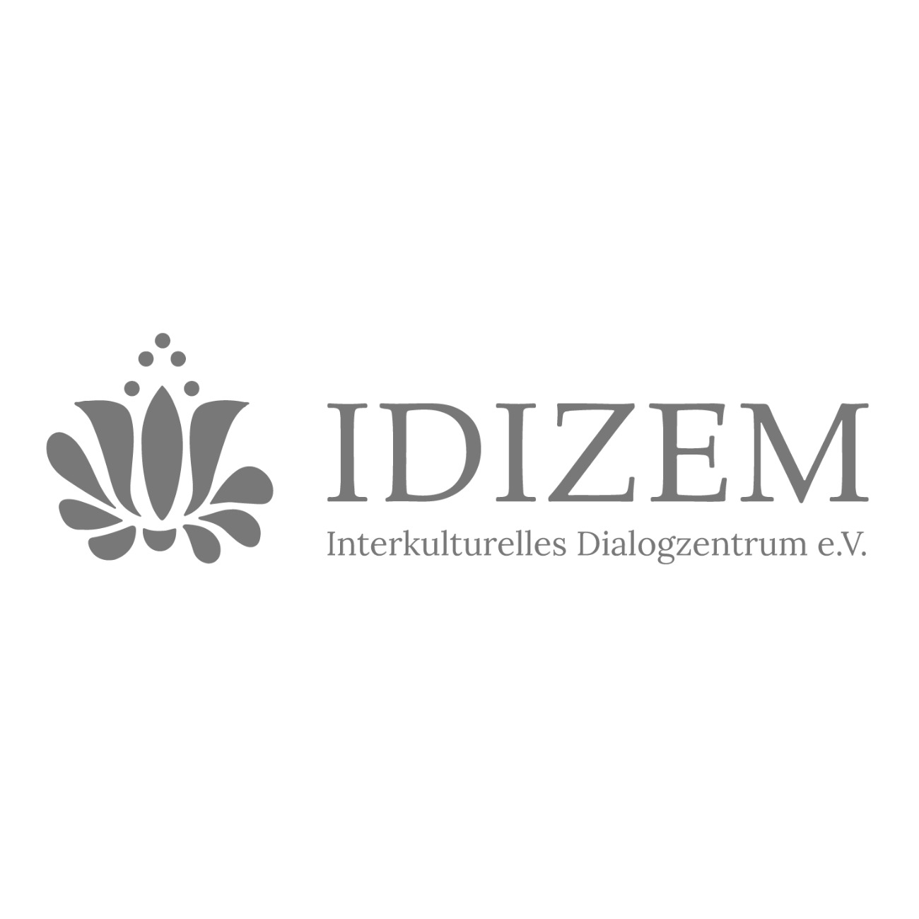 idizem logo